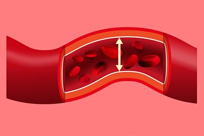 炭酸ガスと血行の関係